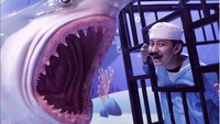 Ingin punya foto bersama ikan-ikan tanpa perlu repot-repot menyelam? Anemone Aquarium jadi spot foto yang tepat di Trans Studio Bandung. Terletak di dalam Ocean World Science Center. (Foto: doc. Trans Studio Bandung)