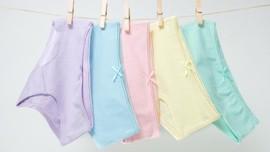 Pakaian Dalam Unik, Bisa Dipakai Berbulan-bulan Tanpa Dicuci