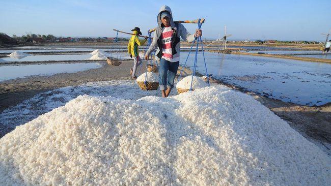 KPPU memprediksi 1,8 juta ton garam lokal tak terserap pada 2021 akibat kebijakan impor.