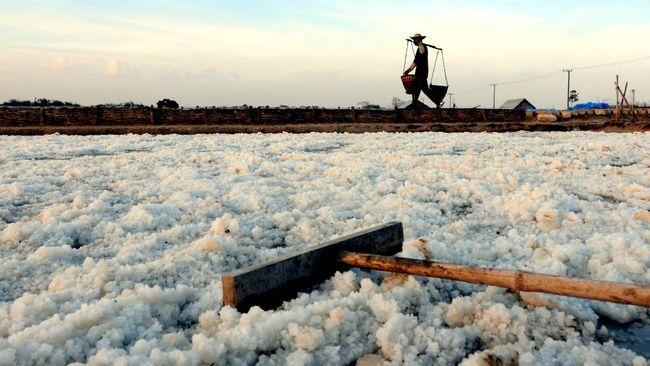 Pemerintah bakal mengimpor garam jika produksi dalam negeri tidak bisa memenuhi kebutuhan tahun ini.