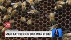 VIDEO: Beda Serta Manfaat Bee Polen, Propolis, dan Madu