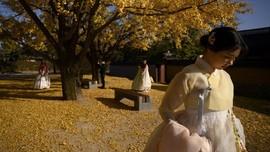 Mengenal Seollal, Perayaan Imlek Ala Korea Selatan