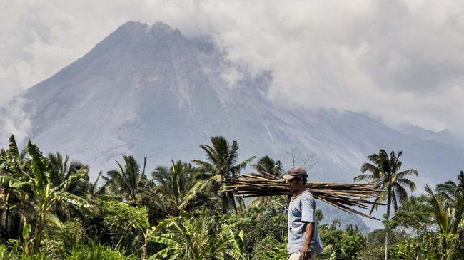 Meski kini status Merapi siaga, namun BPPTKG belum menemukan munculnya kubah lava di permukaan kawah gunung.