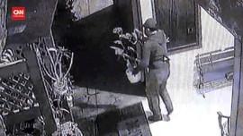 VIDEO: Aksi Pencurian Tanaman Janda Bolong Terekam CCTV