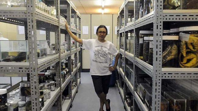 Evy Ayu Arida, peneliti di Pusat Biologi LIPI awalnya bercita-cita menjadi artis, namun Ia 'tercebur' menjadi ahli komodo di Indonesia.
