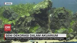 VIDEO: Mengenal Perbedaan Aquascape & Terarium