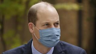 Pangeran William Restui Penyelidikan Wawancara Diana