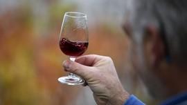 China Bakal Pungut Bea Masuk 212 Persen Anggur Australia