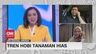 VIDEO: Tren Hobi Tanaman Hias