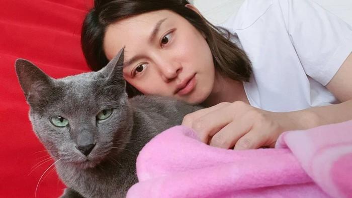 Tak Disangka, 6 Idol Kpop Berikut Pecinta Kucing Sejati!