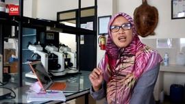 VIDEO: Penjelasan Terkait Fenomena Semut di Banyumas