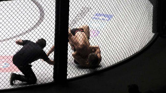 Petarung MMA Uros Jurisic dihajar Shamil Musaev yang asal Dagestan setelah diduga menghina agama Islam.