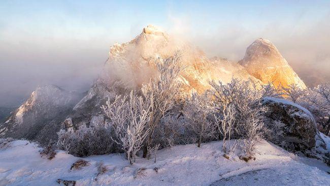 Berikut jawaban lengkap dari sejumlah pertanyaan yang kerap ditanya turis yang bisa menjadi tips dan panduan wisata musim dingin di Korea Selatan.