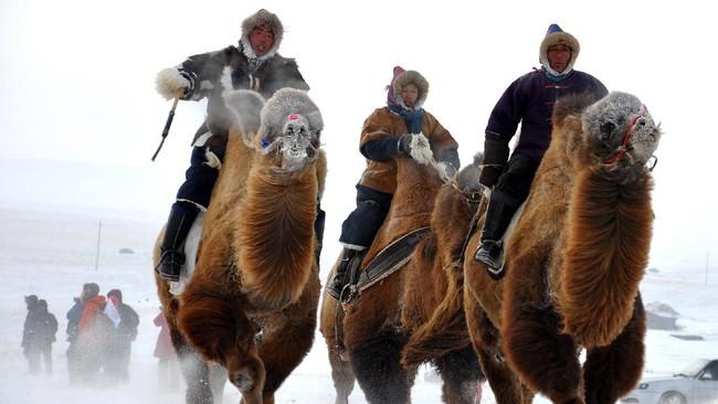Pemandangan sejumlah kawasan di Asia seakan berwarna putih saat musim dingin datang dan orang-orang asik menikmati wisata salju.