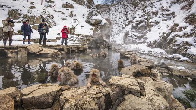 >8 Tempat Wisata Jepang yang Paling Sering Dikunjungi