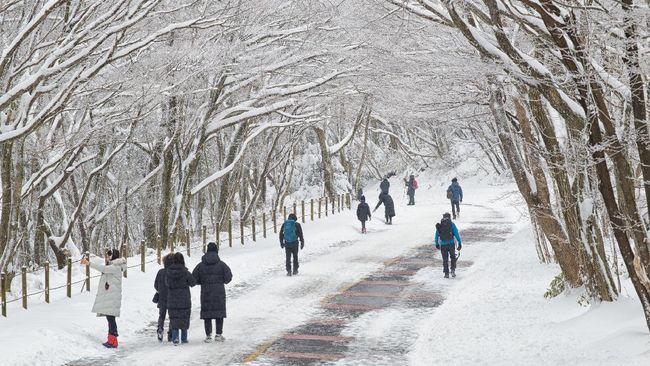 Korea Selatan bukan cuma wisata Kpop, belanja, atau kuliner, karena Negara Ginseng juga punya wisata pegunungan.