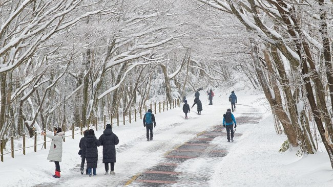 7 Rute Pendakian Terindah di Korea Selatan