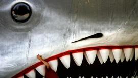Hiu Jaws Raksasa Mejeng di Museum Oscar