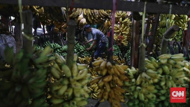 Permintaan subsektor pertanian pada komoditas hortikultura seperti sayur dan buah segar mengalami peningkatan di tengah corona.