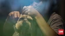 FOTO: Usaha Salon Hewan Tak Sepi Kala Pandemi
