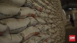 Beras Berbahan Singkong Bulog Jadi Opsi Produk Pangan