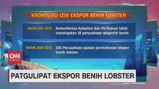 VIDEO: Kronologi Ekspor Benih Lobster