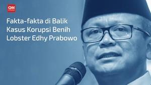 VIDEO: Fakta di Balik Kasus Benih Lobster Edhy Prabowo