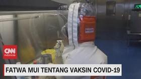 VIDEO: Fatwa MUI Tentang Vaksin Covid-19
