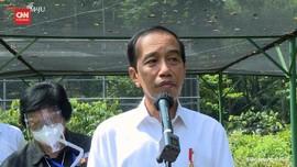 VIDEO: Alasan Presiden Jokowi Bangun Pusat Perbenihan