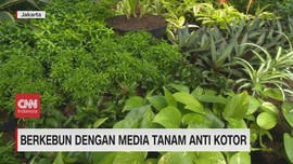 VIDEO: Berkebun dengan Media Tanam Anti Kotor