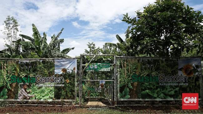 Dinas Ketahanan Pangan Kelautan dan Pertanian DKI Jakarta menyelenggarakan kegiatan panen serentak hasil urban farming. Jakarta, Senin (30/11/2020).