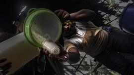 FOTO: Mengenal Sopi, Minuman Beralkohol Warisan Budaya Maluku