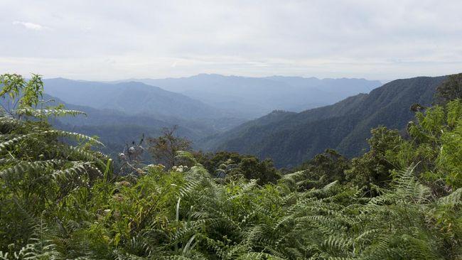 Bukit Algoritma di Sukabumi muncul di google maps dan berjarak 109 km dari Tendean, Jakarta.