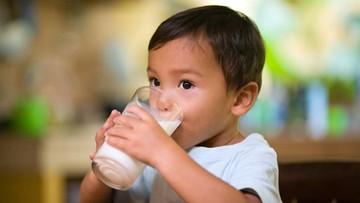 ilustrasi anak minum susu 169