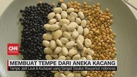 VIDEO: Membuat Tempe dari Aneka Kacang