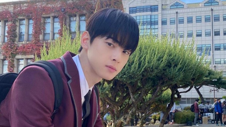 cha eun woo di true beauty
