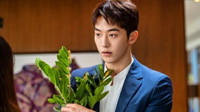 Jade Plants, Tanaman Keberuntungan Seo Dal-mi dan Nam Do-san