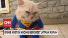VIDEO: Bisnis Kostum Kucing Beromset Jutaan Rupiah