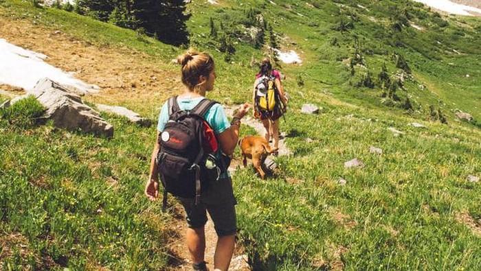 You Go Girls! Ini 6 Tips Mendaki Gunung Bagi Cewek Sampai Lolos ke Puncak