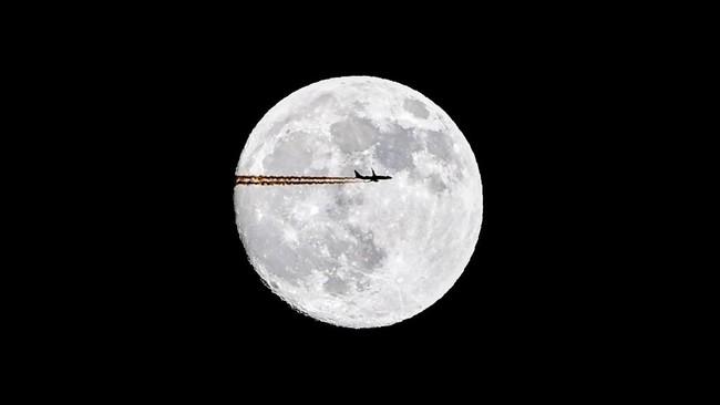 Dalam foto pilihan CNN Indonesia pekan ini, ada kisah seekor Bulbul Hitam di India, kabut tebal di Lahore, dan bulan di atas kota Moskow.