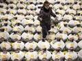 FOTO: Corona, Lelang Tuna di Pasar Ikan Tokyo Sepi Peminat
