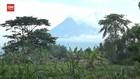 VIDEO: Guguran Awan Panas Pertama Gunung Merapi