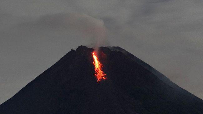BPPTKG mencatat Gunung Merapi meluncurkan tujuh kali guguran lava pada pukul 00.00-12.00 WIB, Sabtu (13/2).
