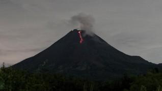 Gunung Merapi Luncurkan Guguran Lava Pijar 10 Kali