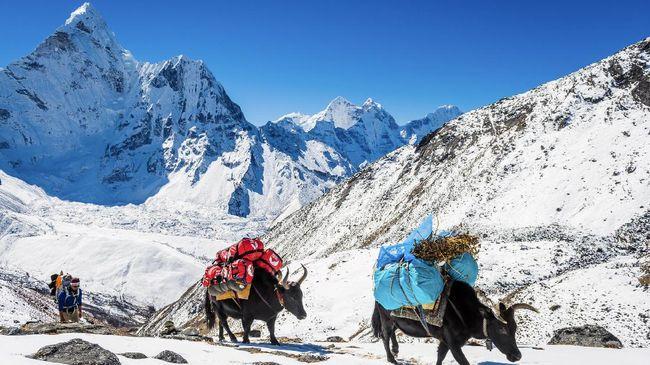 Nepal memulai lagi layanan visa on arrival (visa saat kedatangan). Turis yang telah divaksin diizinkan melewati masa karantina.