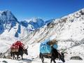 Nepal Dibuka Lagi, Siap Sambut Pendaki Musim Gugur