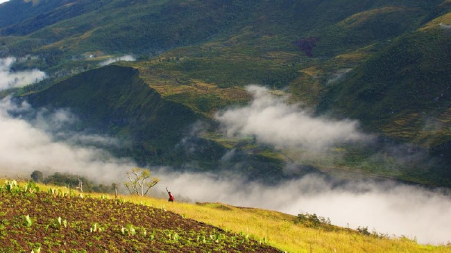 >Menjamah Biru di Antara Hijau Lembah Baliem