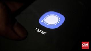 Kasus WhatsApp, Signal Kebanjiran Pengguna di India-Jerman