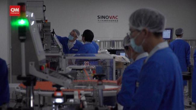 VIDEO: Apa Arti Efikasi 65,3 Persen Vaksin Sinovac?