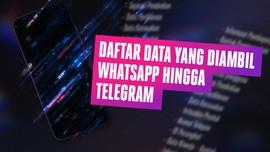 INFOGRAFIS: Daftar Data yang Diambil WhatsApp Hingga Telegram